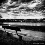 photographie noir et blanc d'un paysage de nature